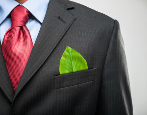 green leaf in businessman's pocket