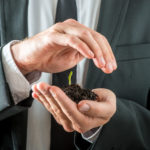 Businessman nurturing a germinating seedling